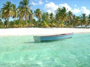 c038b885ccc0411bb1b85df8de335399--saona-island-punta-cana